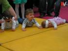 Kotor Varos konferencija beba (9)
